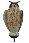Live Owl huuhkaja liikkuvat siivet